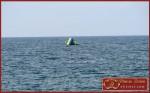Горка в открытом море